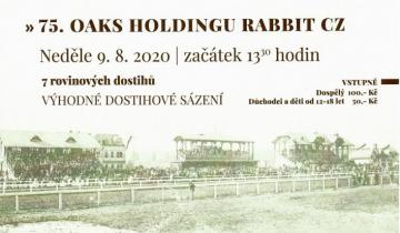 75. OAKS HOLDINGU RABBIT